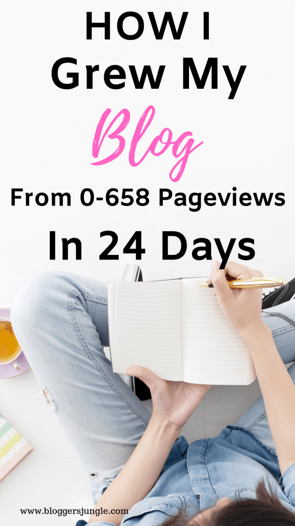 How I Grew My Blog From 0-658 Pageviews In 24 Days