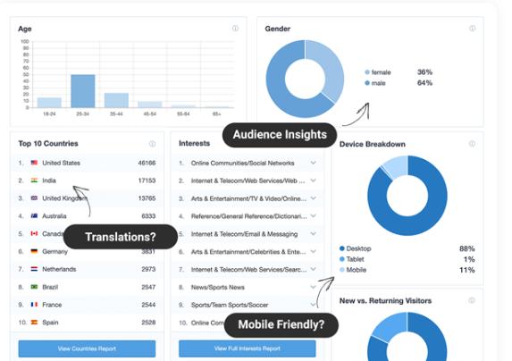 Monster Insights a WordPress Google Analytics plugin